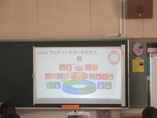 SDGs ウエディングケーキモデル
